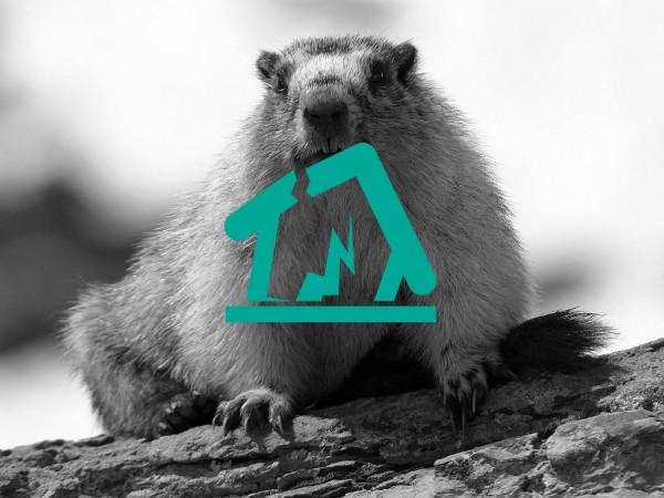 beaver123662