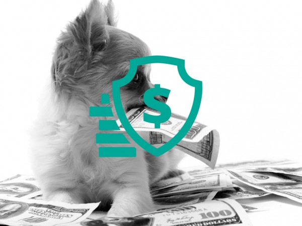 secure-money