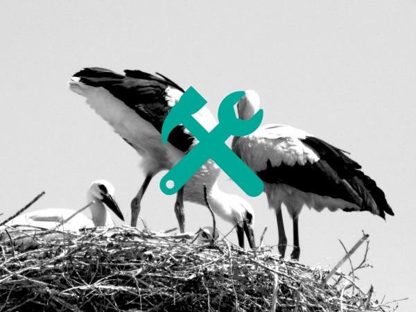 stork-nest